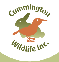Cummington Wildlife, Inc.